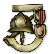 Feuerwehrjugendleistungsabzeichen Bronze
