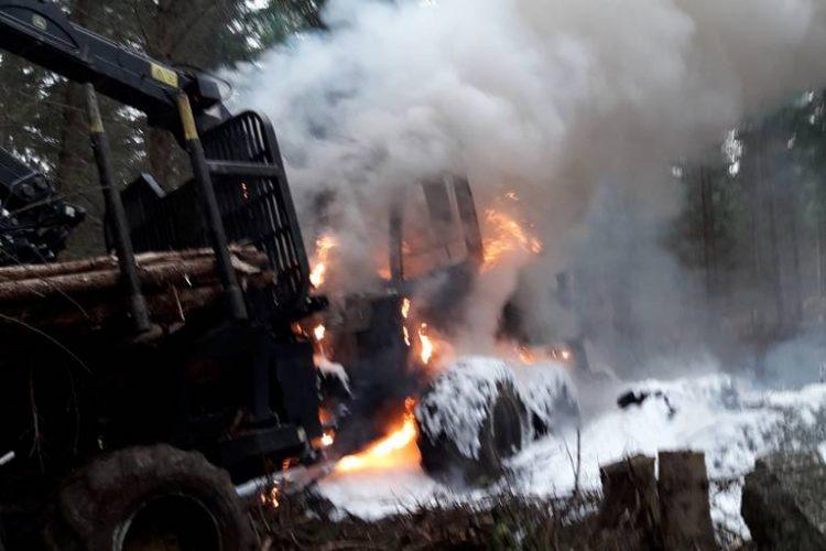 Brandeinsatz im Wald
